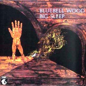 Bild für 'Bluebell Wood'