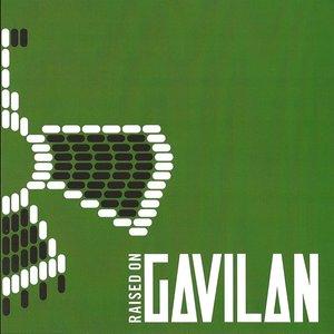 Image for 'Raised on Gavilan'