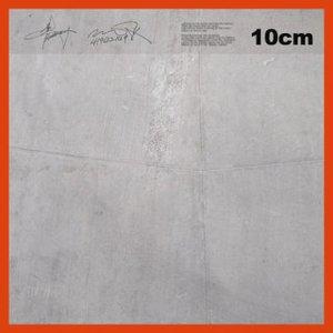 Image for '10cm(십센치)'