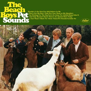 Image for 'Pet Sounds: 40th Anniversary'