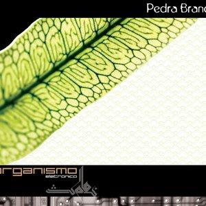 Image for 'Organismo Eletrônico'