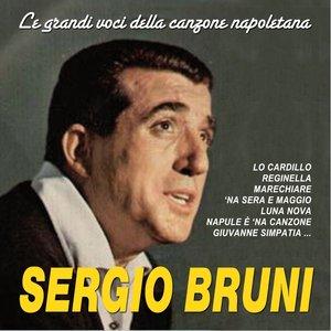 Image for 'Le grandi voci della canzone napoletana'