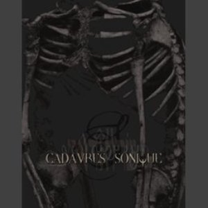 Image for 'Elyr (Cadavres Sonique Compilation)'