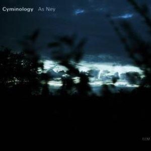 Immagine per 'As Ney'