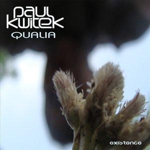 Image for 'Qualia'
