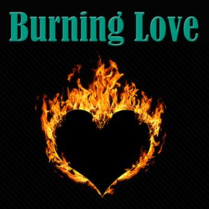 Image pour 'Burning Love'