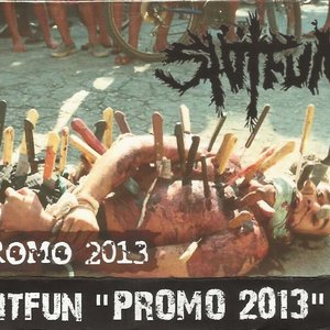 Image for 'Promo 2013'