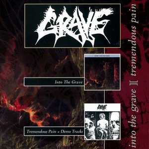 Image for 'Into The Grave & Tremendous Pain'