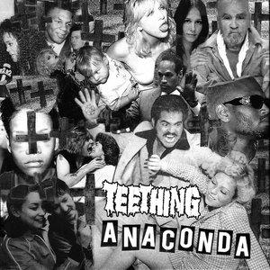 Image for 'Anaconda'