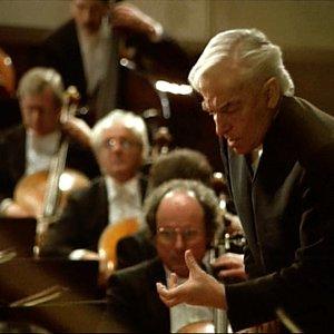 Image for 'Herbert von Karajan [Conductor] & Berliner Philharmoniker [Orchestra]'