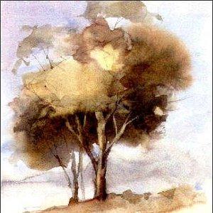 Imagem de 'We Are Trees'