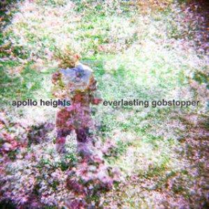 Image for 'The Everlasting Gobstopper'