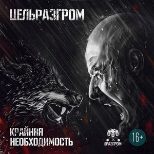 Image for 'ЦельРазгром'