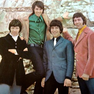Image for 'The Tremeloes'