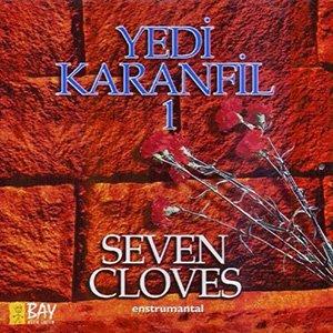 Image for 'YEDI KARANFIL 1'