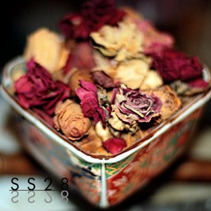 Image for 'Potpourri of Intentions'