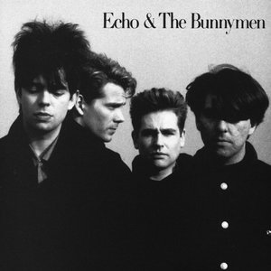 Image for 'Echo & the Bunnymen'