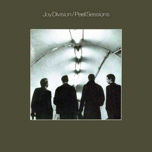 Imagen de 'The Peel Sessions'