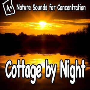 Imagem de 'Nature Sounds for Concentration – Cottage by Night'