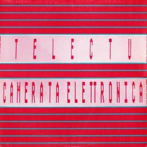 Image for 'Camerata Elettronica'