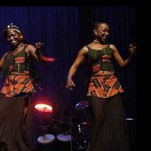 Image for 'Les Go De Koteba'