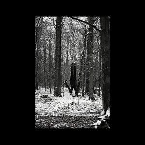 Image for 'Obscur'
