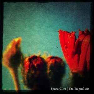 Image for 'The Tropical Air'