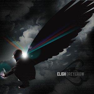Bild für 'Grey Crow'