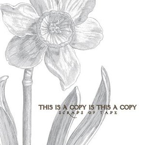 Image for 'This Is A Copy Is This A Copy'