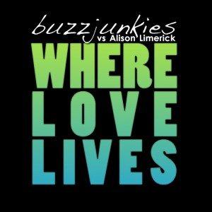 Image for 'Buzz Junkies Vs Alison Limerick'