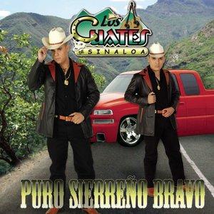 Image for 'Puro Sierreño Bravo'