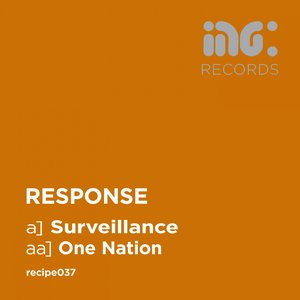 Image for 'Surveillance / One Nation'