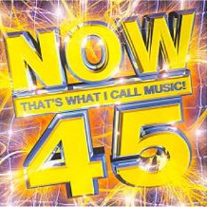 Image for 'Now 45'