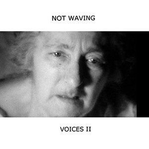 Image for 'Voices II'