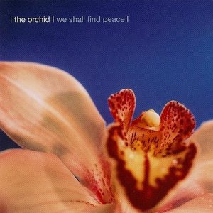 Immagine per 'We Shall Find Peace'