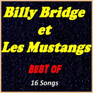 Image for 'Billy Bridge et Les Mustangs: Best Of'