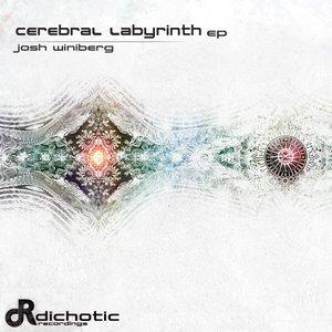 Image for 'Cerebral Labyrinth EP'