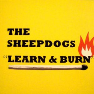 Image for 'Learn and Burn'
