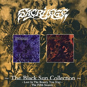 Image for 'Black Sun Collection'