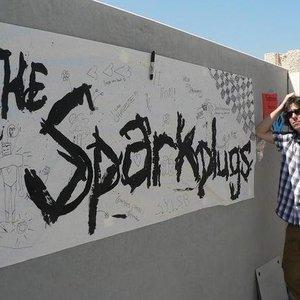 Bild för 'The Sparkplugs'