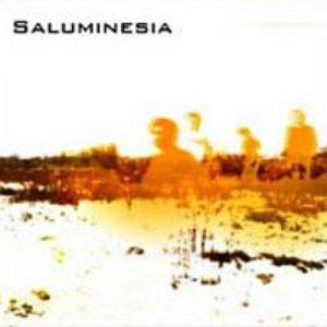 Image for 'SALUMINESIA EP.'
