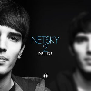 Image pour 'Love Has Gone (Netsky's Love Must Go On Refix)'