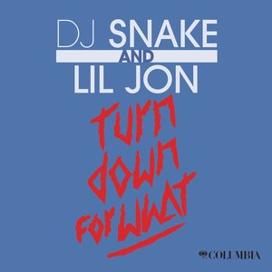 Image for 'Turn Down for What'
