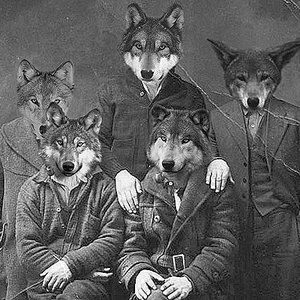 Image for 'The Republic of Wolves'