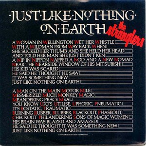 Image for 'Just Like Nothing On Earth'