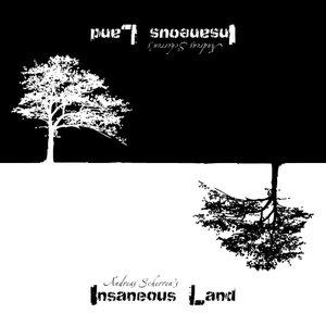 Bild för 'Insaneous Land'