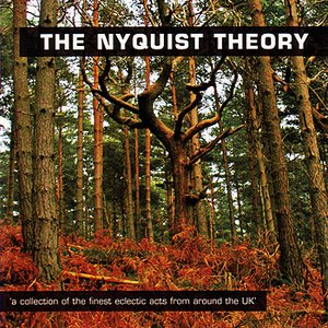 Image for 'The Nyquist Theory'