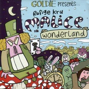 Bild für 'Malice In Wonderland'