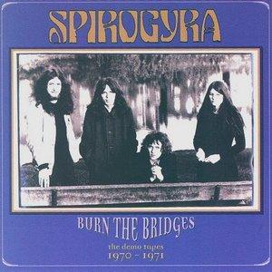Image for 'Burn The Bridges'