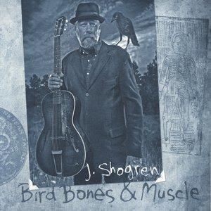 Image for 'Bird Bones & Muscle'